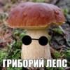Аватар пользователя BROZEX