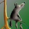 Аватар пользователя Wolfling